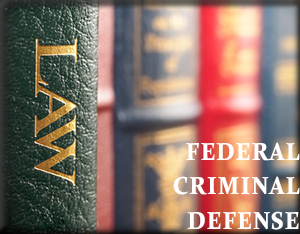 Federal Criminal Defense Attorney